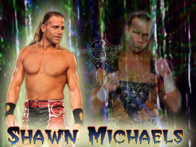 Shawn Micheal Images