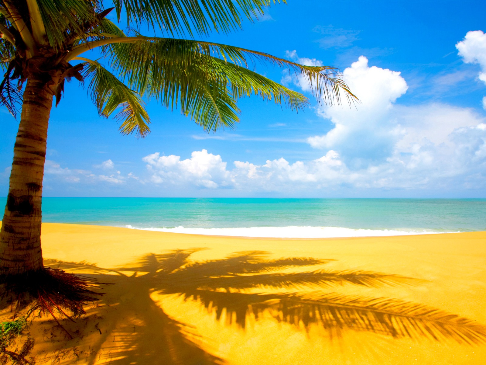 http://beautifulcoolwallpapers.files.wordpress.com/2011/07/beach-wallpaper-03.jpg
