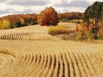 Beautiful Landscape Wallpapers