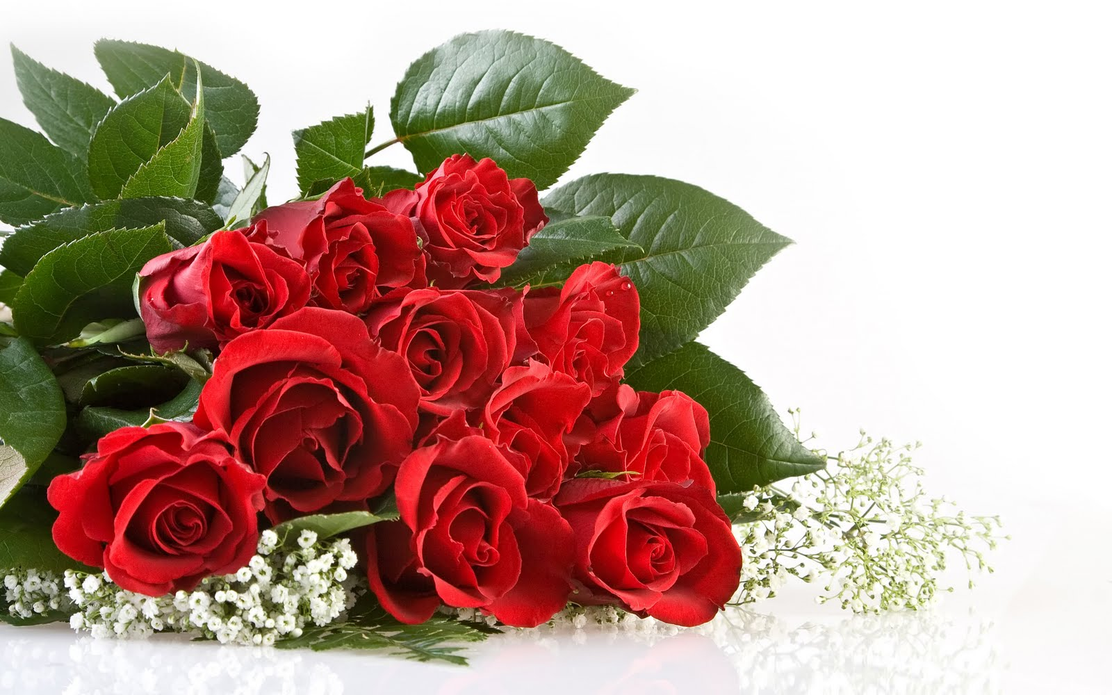 Red rose flowers beautiful cool wallpapers - Bunch of roses hd images ...