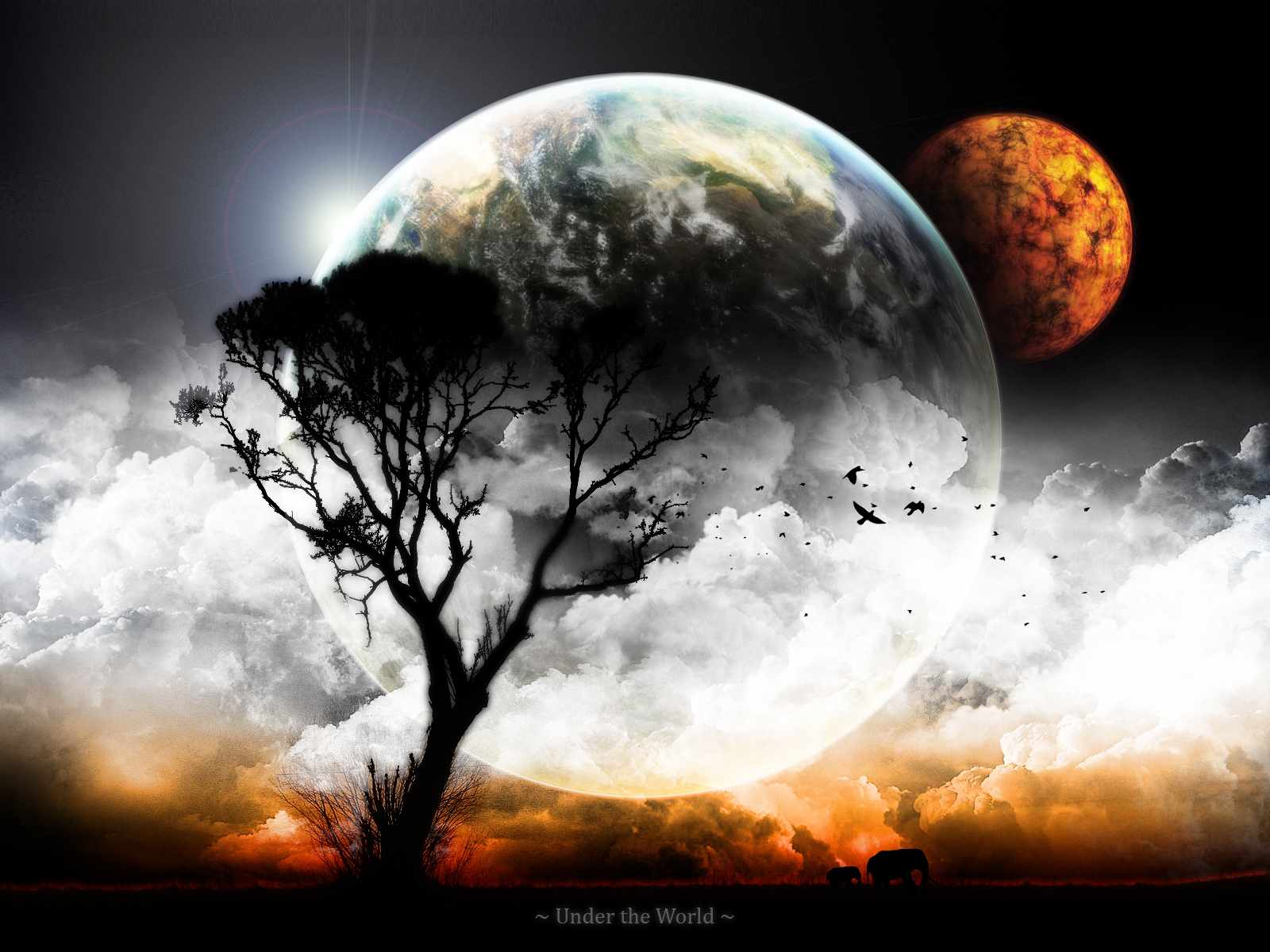 pretty moon wallpapers - photo #9