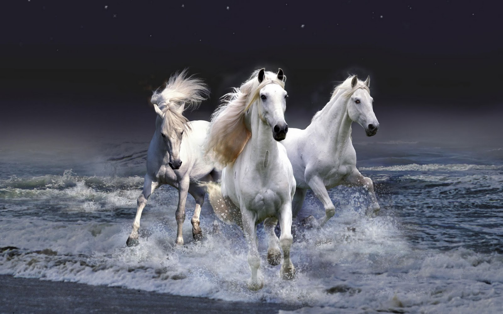 Must see Wallpaper Horse Desert - the-best-top-desktop-horse-wallpapers-15  Pic_879372.jpg